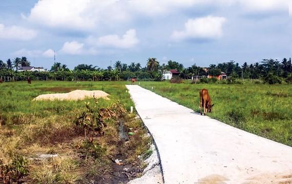 TSBĐ là đất nông nghiệp khi thế chấp ngân hàng sẽ khó phát mãi vì không thể sang tên được.