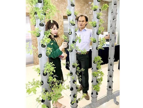 Thiết bị trồng rau khí canh cho nhà phố của Euro farm