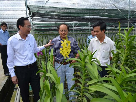 TPHCM: Phấn đấu đạt 56 xã nông thôn mới