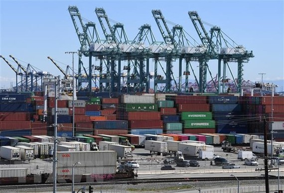 Container hàng hóa từ Trung Quốc và các nước khác được xếp dỡ tại cảng Long Beach, Los Angeles, California, Mỹ. (Ảnh: AFP/TTXVN)