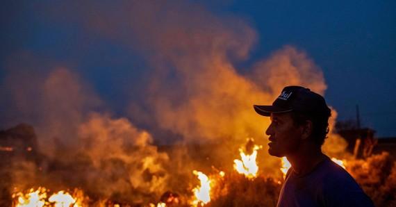 """Thế giới chung tay giải cứu """"lá phổi của hành tinh"""" Amazon"""