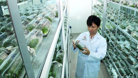 GS-TS Bùi Chí Bửu, chuyên gia hàng đầu về nông nghiệp