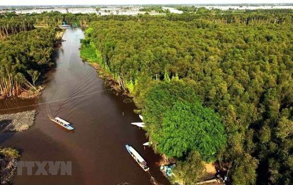 Một góc Đồng bằng sông Cửu Long. (Nguồn: TTXVN)