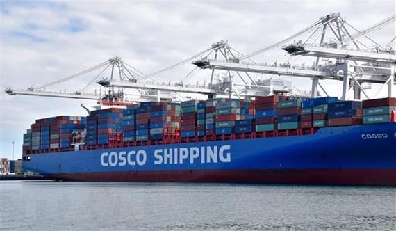 Container hàng Trung Quốc chờ được bốc dỡ tại cảng Long Beach ở Los Angeles, Mỹ. (Nguồn: THX/TTXVN)