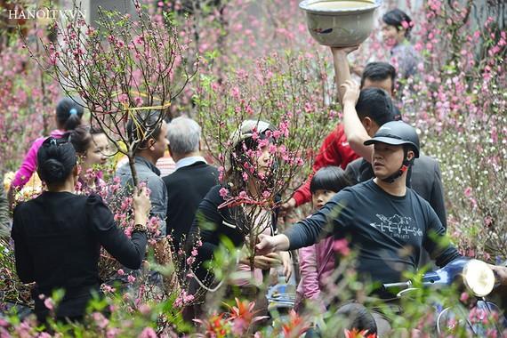 """Mặt hàng hoa và cây cảnh đã """"kéo"""" chỉ số giá nhóm hàng hóa dịch vụ khác tăng 0,22%"""