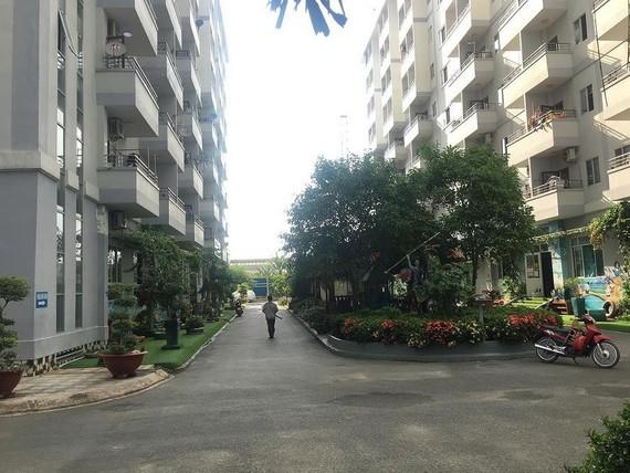 公寓周圍是綠樹空間。