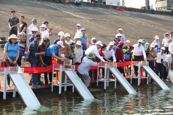 Đại diện các cơ quan chức năng, nhà tài trợ tiến hành thả cá giống xuống lòng hồ thủy điện Sông Tranh 2