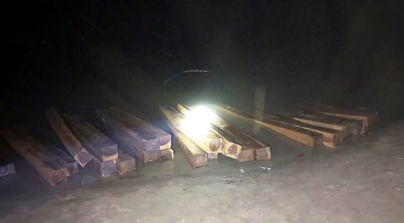 Số gỗ lậu bị bắt giữ