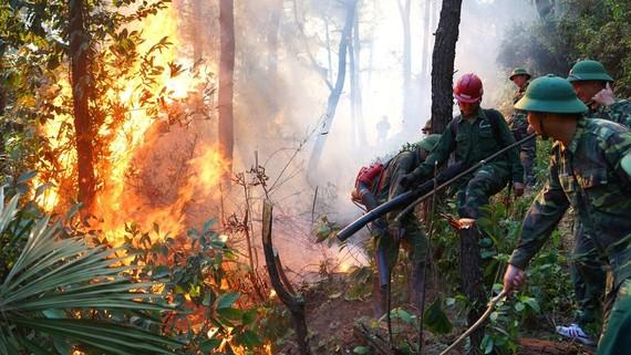 Lực lượng chức năng triển khai khống chế cháy rừng ở huyện Nghi Xuân