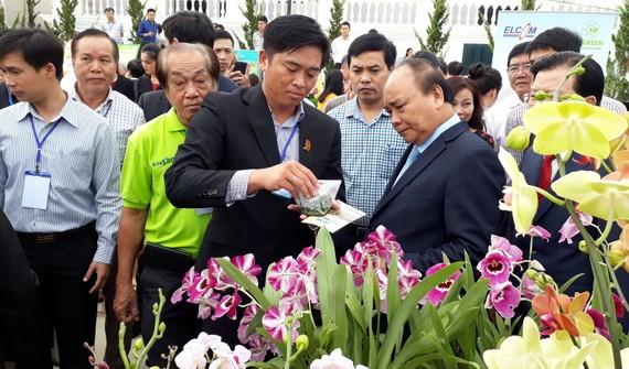 Anh Phan Thanh Sang, Chủ tịch Hiệp hội Hoa Đà Lạt giới thiệu với Thủ tướng về giống hoa lan mới