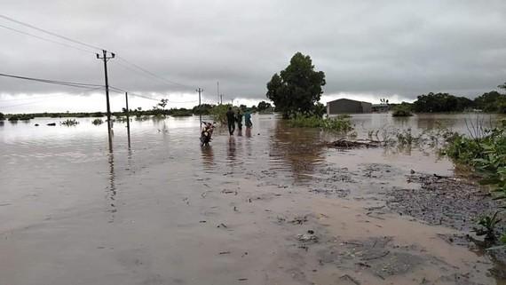 Mưa lớn làm nhiều nhà của, hoa màu tại Đắk Lắk bị ngập