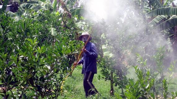 Thuốc BVTV giả vừa gây thiệt hại cho sản xuất nông nghiệp và ảnh hưởng sức khỏe nông dân