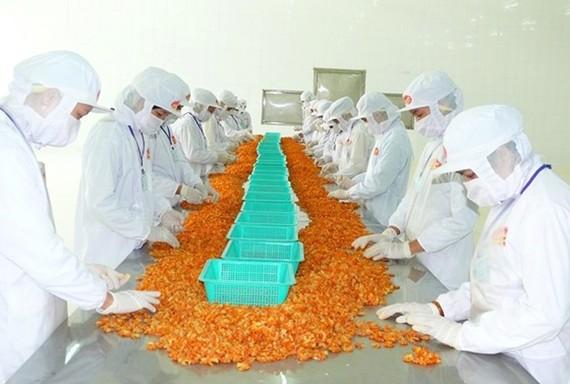 ĐBSCL là vùng sản xuất và xuất khẩu nông thủy sản chủ lực nhưng việc liên kết còn hạn chế
