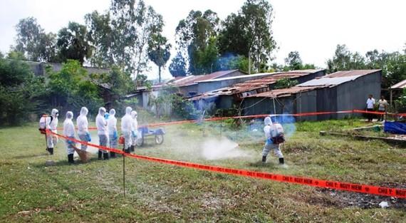 Lực lượng thú y An Giang diễn tập khẩn cấp phòng chống bệnh dịch tả heo châu Phi. Ảnh: NHƯ HÙNG