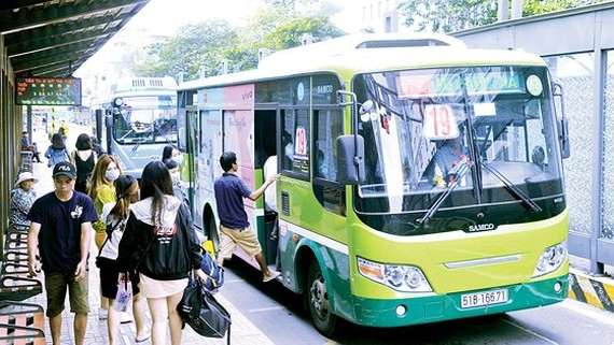 Tổ chức đấu giá lần thứ 5 cho thuê quảng cáo trên xe buýt