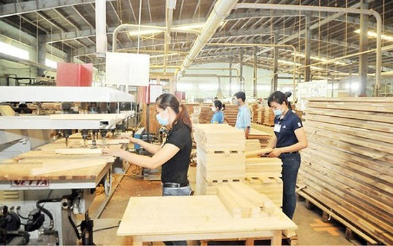 Production of MDF products at a local company. (Photo: SGGP)