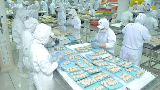 HCMC's export turnover signals slowdown