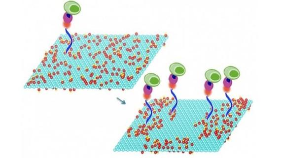 Hiệu quả của Graphene làm chất phụ gia động cơ