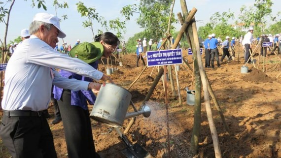 Tree planting festival is organized in HCM City on May 18. (Photo: Sggp)