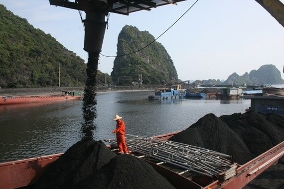 Deputy Prime Minister Trinh Dinh Dung has approved a proposal to build a coal shipment port in the southern region (Photo: nangluongvietnam.vn)