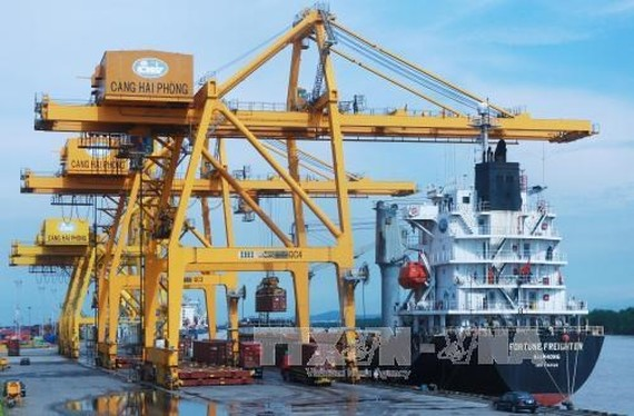 The Hai Phong International Container Terminal (HITC) will welcome the first ship on May 13. Illustrative image. (Photo: VNA)
