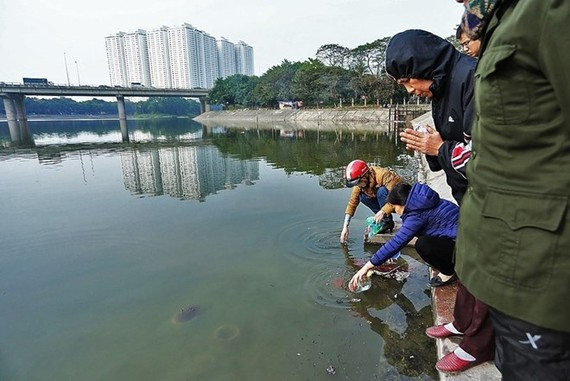 People release live carps into lakes and pray for good luck (Photo: VNA)