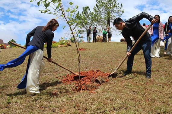 First cherry blossom trees are planted on Langbiang mountain.