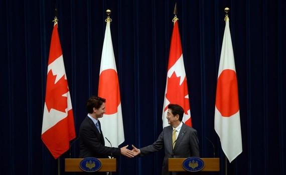 日本或加拿大將領航TPP?(圖片來源:AP)