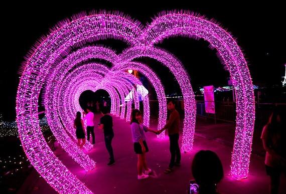 サイゴン動物園、LEDのライトフェスティバル開催