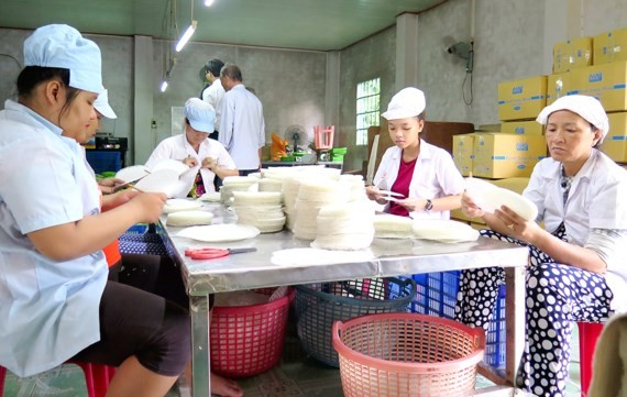 Rural laborers work in a company in Cu Chi District (photo: SGGP)