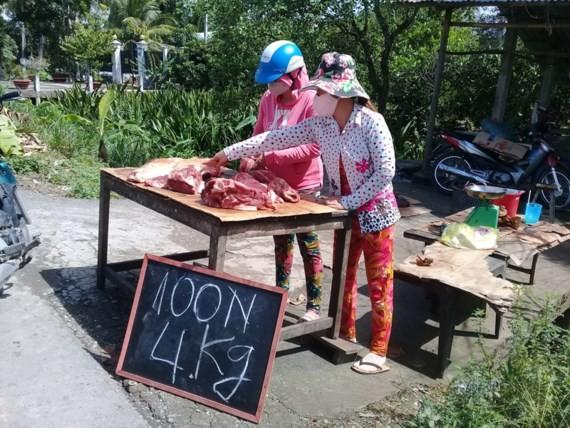 Breeders in Vinh Long Province sell pork in roadside (Photo: SGGP)