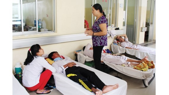Dengue patients have to stay in path in  the Tropical Disease Hospital in HCMC (PHoto: SGGP)