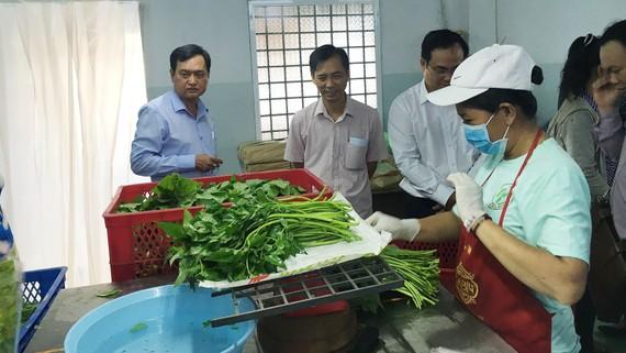 Kiểm tra tại một cơ sở đóng gói rau muống sản xuất theo tiêu chuẩn VietGAP