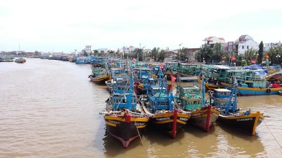 Bình Thuận cấm tàu thuyền ra khơi từ sáng 3-1.