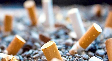 Đầu lọc thuốc lá làm vật liệu xây dựng đường giao thông