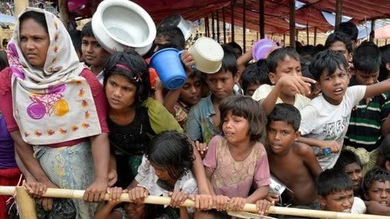 Người tị nạn Rohingya xếp hàng chờ nhận lương thực cứu trợ tại trại tị nạn Thaingkhali ở Ukhia, Bangladesh. Nguồn: TTXVN