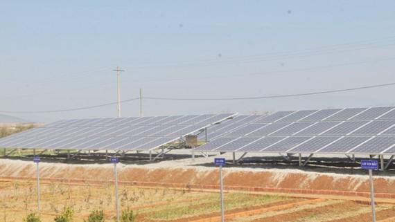 Hệ thống điện mặt trời tại một trang trại ở tỉnh Lâm Đồng. Ảnh: THÀNH TRÍ