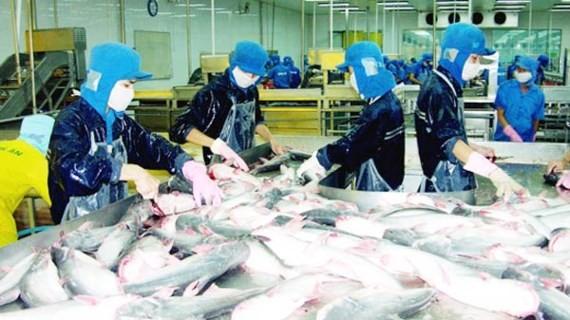 Mỹ cam kết tạo thuận lợi cá da trơn VN