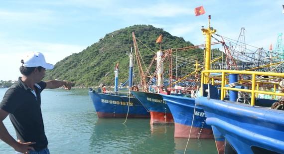 Ngư dân Nguyễn Công Quý (ở cảng cá Đề Gi, Phù Cát, Bình Định) đóng tàu vỏ thép hơn 14 tỉ đồng chỉ ra khơi được một lần rồi nằm bờ gần hai năm nay