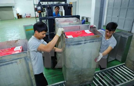 Sau khi đóng thùng tại cơ sở thu mua, các thùng vải sẽ được đưa tới Trung tâm Chiếu xạ Hà Nội để tiến hành chiếu xạ, đảm bảo kéo dài thời gian bảo quản, trước khi được kiểm dịch và xuất khẩu.