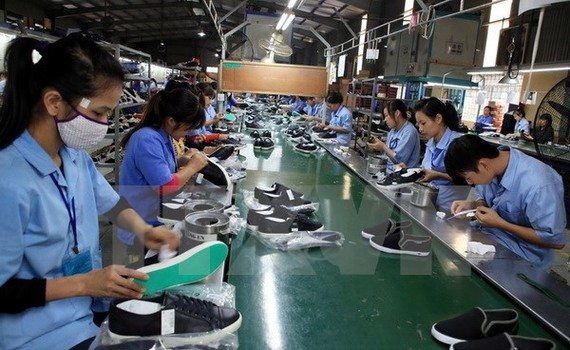 Sản xuất giày xuất khẩu.