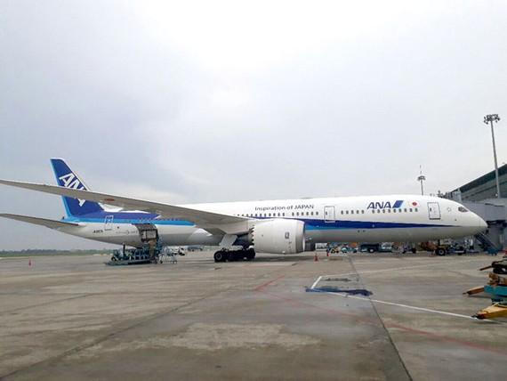 Tỷ lệ cổ phần bán cho nhà đầu tư chiến lược như ANA tại Vietnam Airlines vẫn còn khiêm tốn ở mức khoảng 8%