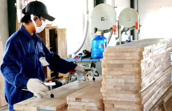 Việt Nam là điểm đến hấp dẫn cho các khoản đầu tư mới