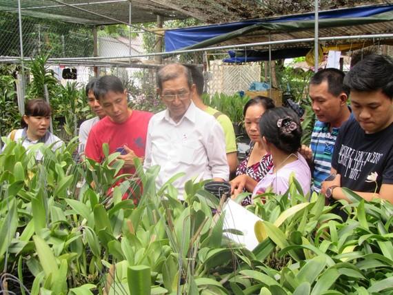 Tập trung 6 nhiệm vụ trong xây dựng nông thôn mới