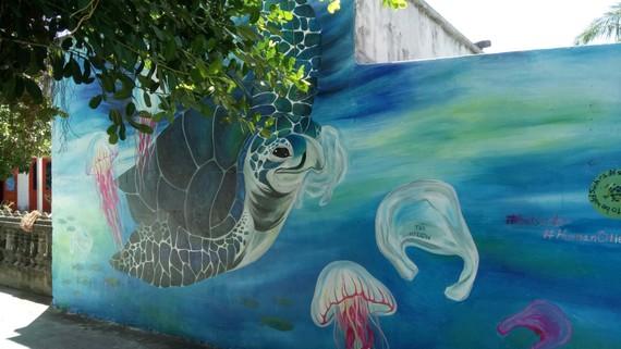Những bức ảnh về cuộc sống hòa thuận giữa rùa biển và người dân. Ảnh: Huỳnh Ngọc Dũng.