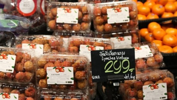 Litchi fruit has officially been shelved in Thai supermarkets since July 3, 2017