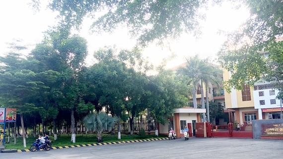 Trước trụ sở Quận ủy quận Tân Phú có mảng xanh tạo không gian thoáng đãng