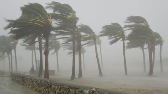 Từ nay đến cuối năm 2017 còn khoảng 6-8 cơn bão và áp thấp nhiệt đới