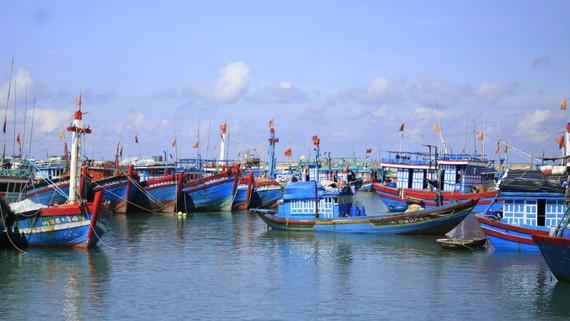 Tàu thuyền tránh bão tại đảo Lý Sơn, Quảng Ngãi