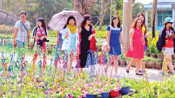 Du khách tham quan làng hoa Sa Đéc, Đồng Tháp